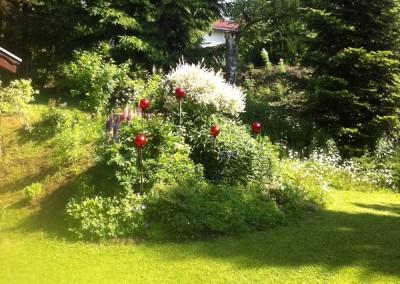 Garten/garden/giardino